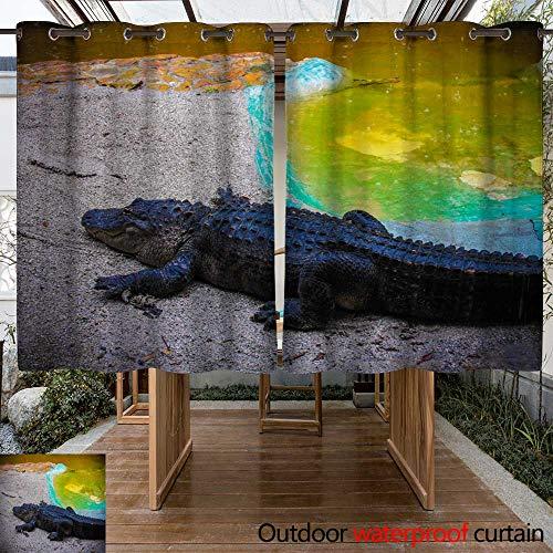 Lighted Outdoor Alligator