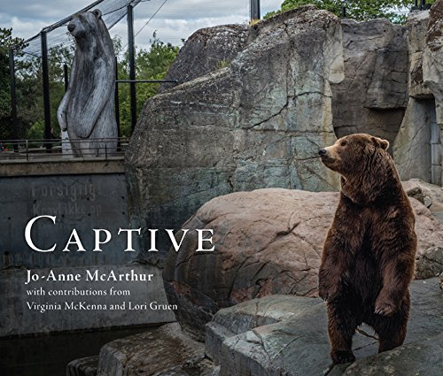 Captive (English Edition)