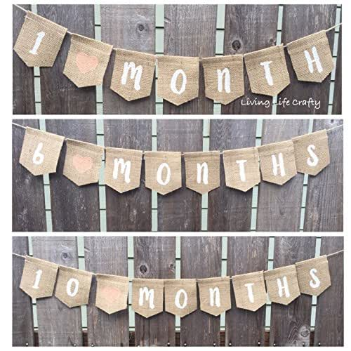 Baby Month Sign, Baby By Month, Monthly Milestone, Burlap Banner, Monthly Baby Banner Bunting