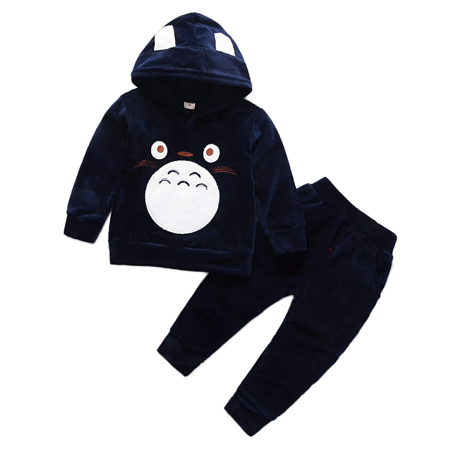 Baby Totoro Clothes Set Velvet Hooded Sweatshirt with Pants for Boys Girls Bangtan Boys