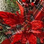 National-Tree-24-Inch-Decorative-Collection-Tartan-Plaid-Wreath-with-Cones-Red-Berries-Poinsettias-and-50-Battery-Operated-Soft-White-LED-Lights-with-Timer-DC13-147-24WB-1