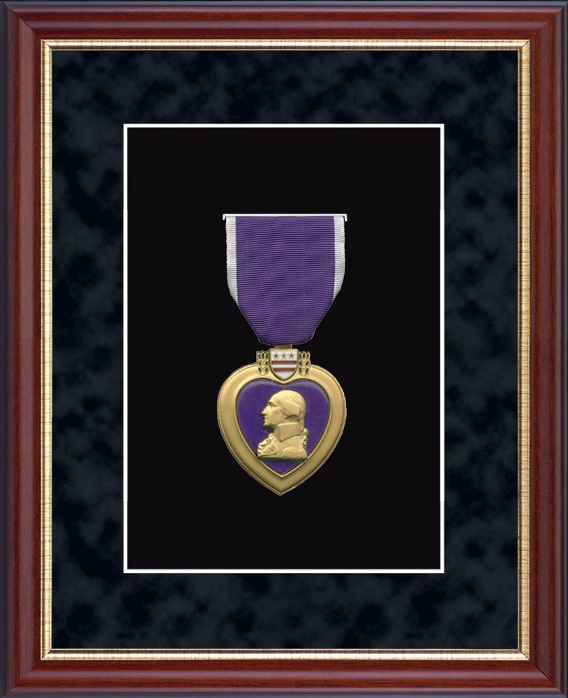 Church Hill Classics Purple Heart Medal Display Frame - Museum-Quality Matting - Made in USA