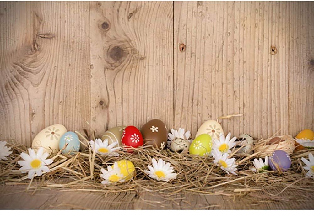 SEEGOU - Fondo de fotografía de Vinilo para fotografía de Pascua ...