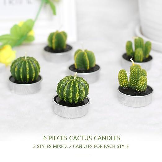 TiooDre - Velas de Cactus, 6 Unidades, Multiusos, para Carne ...