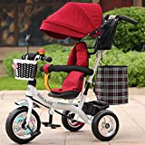 Multifunctional Children's Tricycle Baby Trolley 1-6 Years Old Infant Child Bicycle Removable Boys And Girls Bike Multi-color Cloth Awning (Color : White-F)