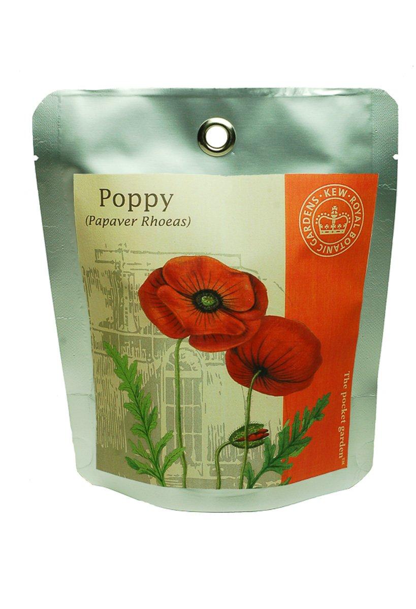 Kew Grow Poppy Pocket Gardens Kit Canova Garden