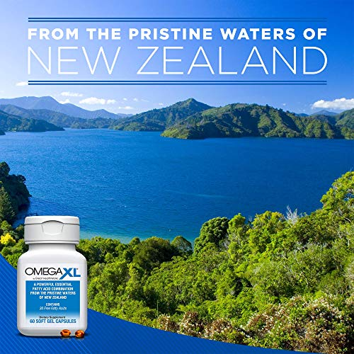 Omega XL 120 Capsules - Green Lipped Mussel New Zealand, Omega 3 Natural Joint Pain Relief & Inflammation Supplement by Omega XL® (Image #3)