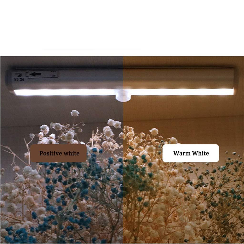 WLBD Sensor de Movimiento Luz del Armario, Mejorado 20 LED para Interiores Batería Recargable inalámbrica Armario Armario Debajo del gabinete de Cocina ...