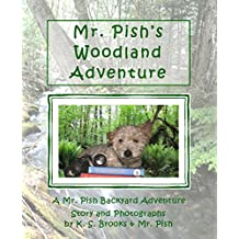 Mr. Pish's Woodland Adventure (A Mr. Pish Backyard Adventure Book 1)
