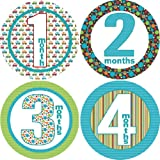 On the Go Monthly Baby Bodysuit Stickers, Baby & Kids Zone