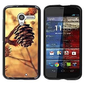 "Pulsar Snap-on Series Teléfono Carcasa Funda Case Caso para Motorola Moto X Motorola Moto X ( 1st Generation ) , Cono Colden Marrón Naturaleza Otoño"""
