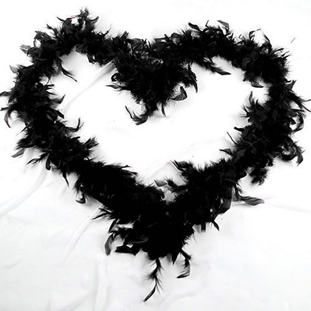 Livecity 2M Feather Boa Strip Fluffy Craft Costume Hen Night Dressup Wedding Fancy Party (Black)