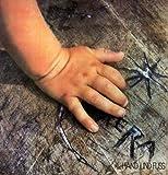 Hand & Fuss 1976