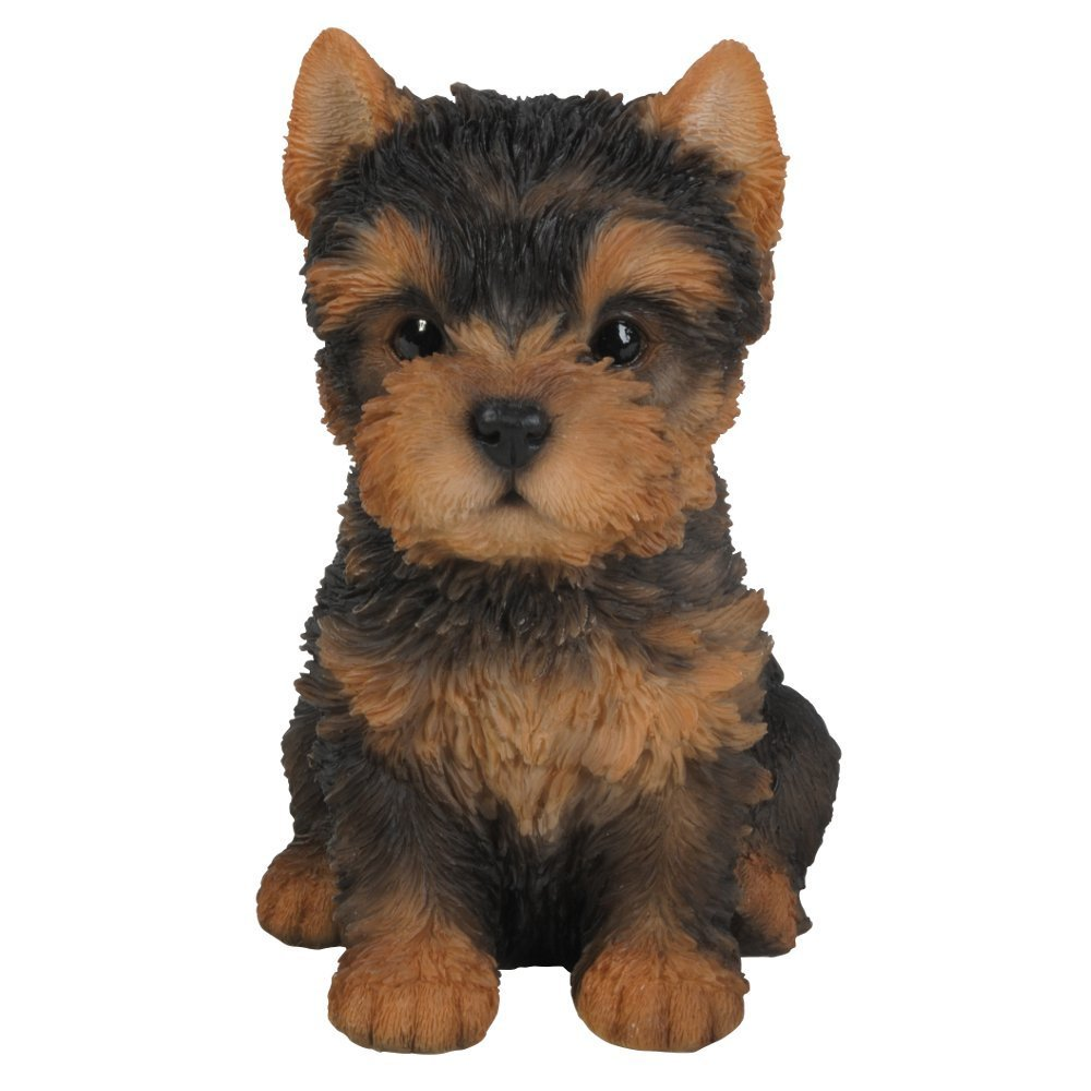 Pet Pals D/écoration Yorkshire Terrier