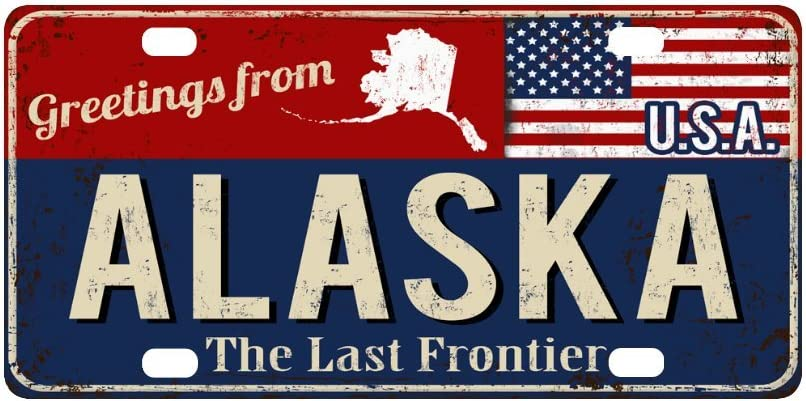 INTERESTPRINT Greetings from Idaho Rusty Metal Sign with American Flag Car Decor Metal License Tag Plate for Woman Man 12 x 6