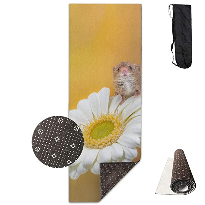Amazon.com: Brown Mouse On Turf Grass Flower Yoga Mat ...