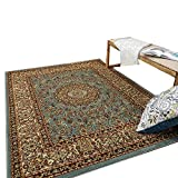 Maxy Home Pasha Traditional Medallion Multicolor 3 ft. 3 in. x 5 ft. Area Rug