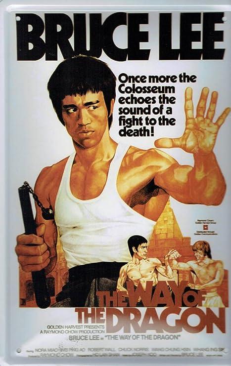 Blechschild 20x30 Bruce Lee US Filmstar Werbung Plakat Kino Reklame Bar Schild