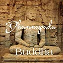 Dhammapada Audiobook by  Buddha Narrated by  Austin Vanfleet