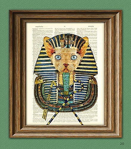 Pharaoh Cat King Sphynx the Egyptian Cat rules the sands illustration beautifully upcycled dictionary page book art print -