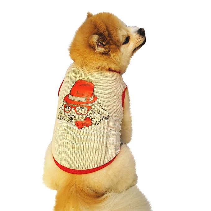 Geilisungren Verano Camiseta Chaleco Camiseta del Animal Chaleco para Mascotas Impresión Ropa para Mascotas Perros pequeños Correa Princesa Vestido Abrigo ...