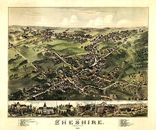 Cheshire, Connecticut - Panoramic Map (16x24 SIGNED Print Master Giclee Print w/Certificate of Authenticity - Wall Decor Travel Poster)
