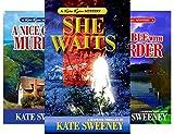 Kate Ryan Mysteries (12 Book Series)