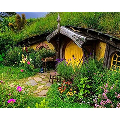 Hobbit Village Digital Painting,DIY Oil Painting Digital Kit,Adults,Children.: Toys & Games