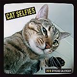 Cat Selfies 2018 12 x 12 Inch Monthly Square Wall Calendar, Pet Humor Kitten