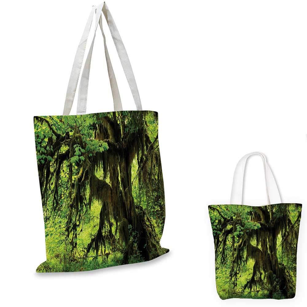 レインフォレストジャングルビュー ウォーターフォールロックとツリーの自然の美しさがワイルドな雰囲気グリーンブラウン。 15
