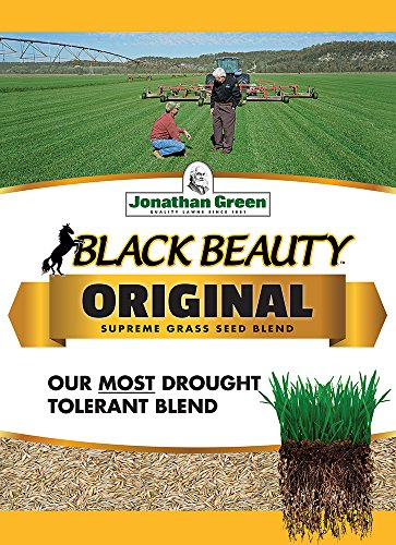 Jonathan Green 10315 Black Beauty Grass Seed Mix, 25-Pound (Best Grass Seed Mix For New England)