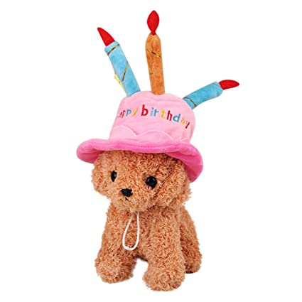 Amazon Patgoal Pet Birthday Hat For Small Cats Dogs Cake