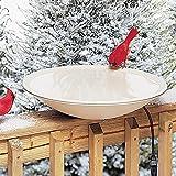 Allied Precision 20 in. Heated Bird Bath