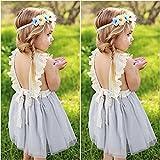 LOliSWan Little Girls Fairy Lace Princess Dress
