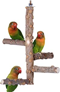 KinTor Bird Perch Nature Wood Stand for 3-4pcs Small Parrots