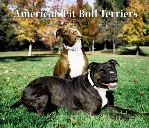 Bull Terrier 2010 Calendar - American Pit Bull Terriers, For the Love of 2010 Deluxe Wall (Multilingual Edition)