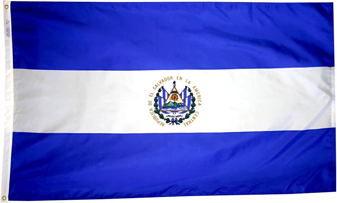 Annin Flagmakers 192401 International Flag, 3x5', not_applicable