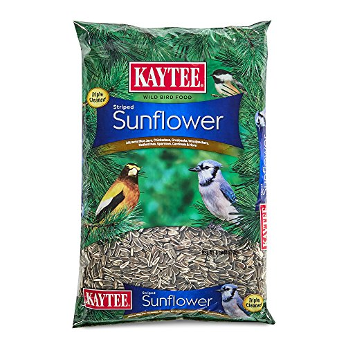 (Kaytee Striped Sunflower, 5-Pound)