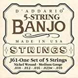 D\'Addario J61 5-String Banjo Strings, Nickel, Medium, 10-23