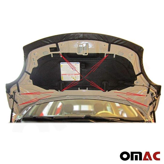 Mercedes Sprinter frontal campana cubierta máscara capó de vinilo negro sujetador stoneguard pantalla W906: Amazon.es: Coche y moto