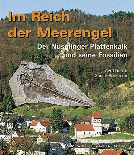 Im Reich der Meerengel: Der Nusplinger Plattenkalk und seine Fossilien