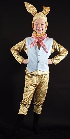 World Book Day-Animal-Brer-Peter Rabbit BRER RABBIT COSTUME SET Kids Fancy Dress