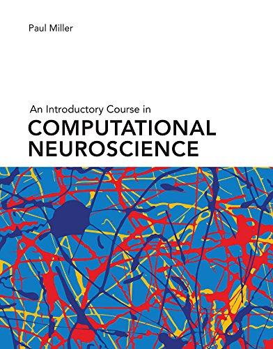 Which are the best systems neuroscience available in 2019?
