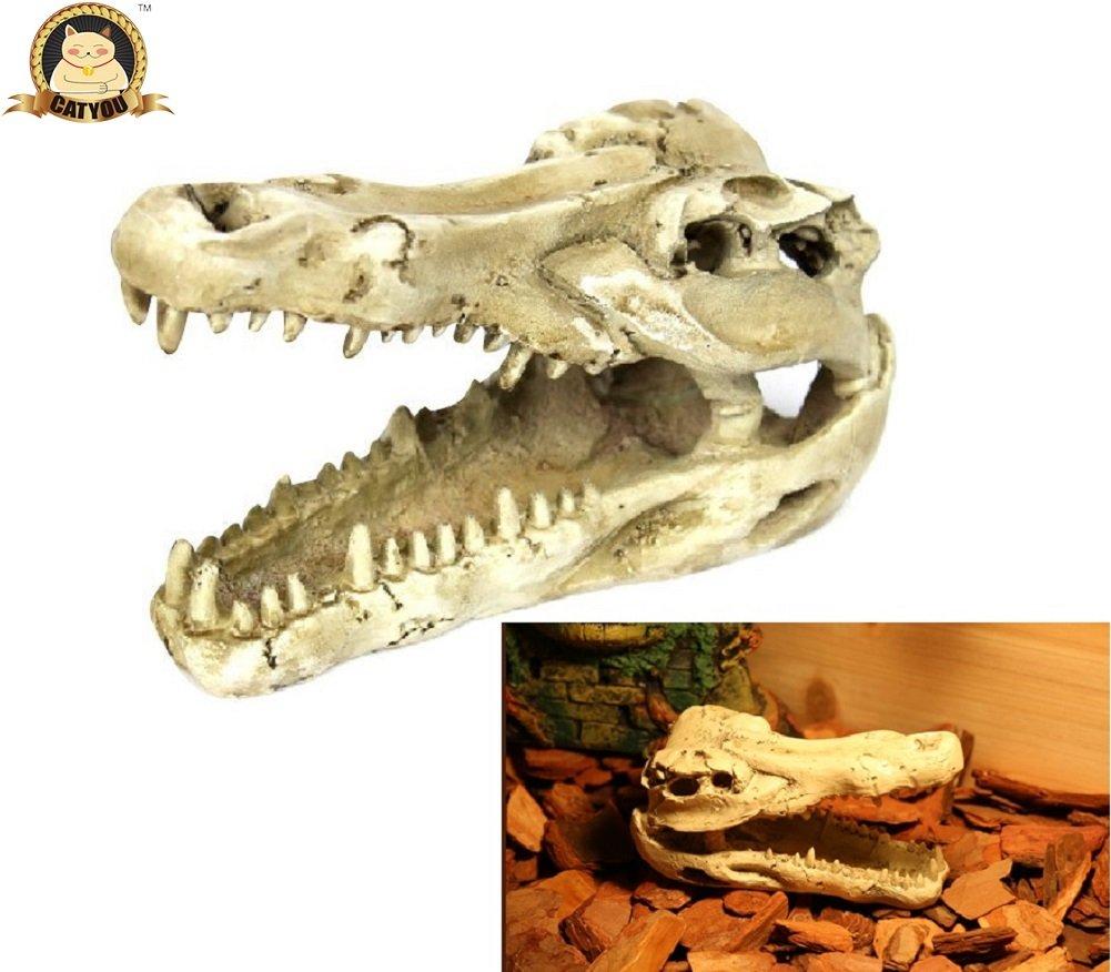 CatYou Reptile Cave, Terrarium Decoration, Hideout Reptile Tank Décor (Skull Look)