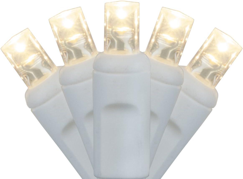 Wintergreen Lighting 20 Light 5mm Warm White LED Craft Lights
