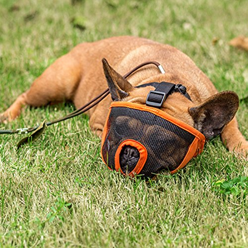 Dog Muzzle for Barking for Short Snout Pitbulls Dog Anti Biting Chewing Eating hot sale 2017