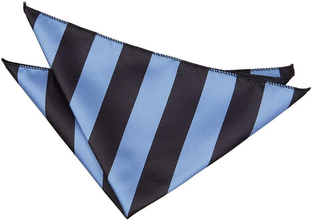 DQT Men Blue Solid Plain Stripe Floral Paisley Polka Dot Pocket Square