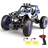 SPESXFUN Remote Control Car, 2018 Newest Vision RC Car Off Road RC Truck Hobby Toy Cars Small Electric Vehicle Crawler for Kids and Adults with Two Batteries