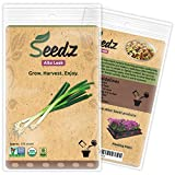 CERTIFIED ORGANIC SEEDS (Appr. 125) - Alto Leek - Leek Seeds, Open Pollinated - Non GMO, Non Hybrid Vegetable Seeds - USA