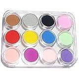 TOOGOO(R) PRO 12 Couleurs Poudre Pour Ongle Acrylique Vernis Nail Art Deco Manucure